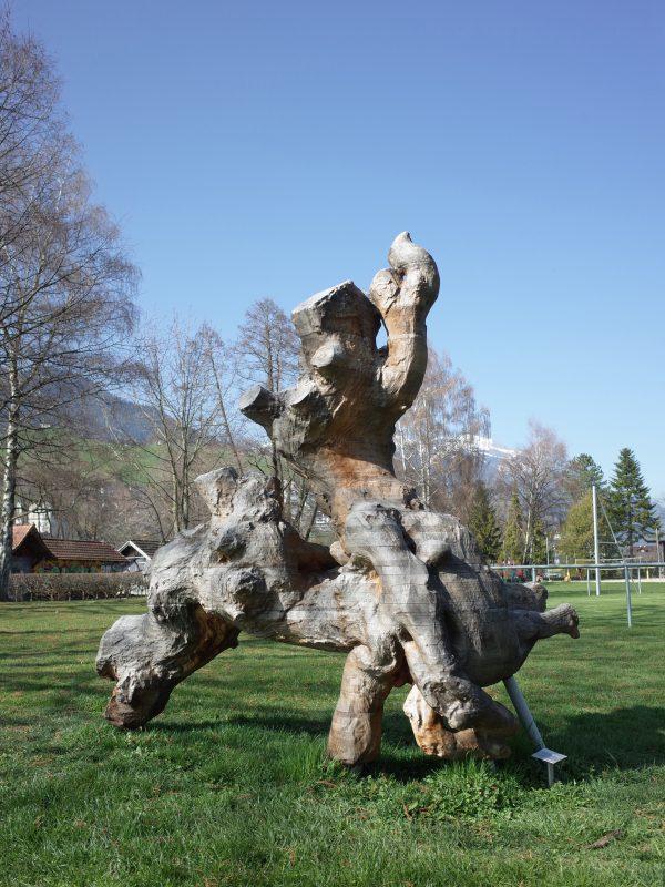 Rene Odermatt Kentaur 5